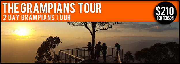 2 Day Grampians Tour