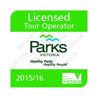 Good Times Tours - Operator License