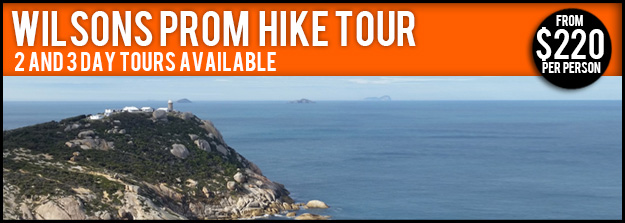 Wilsons Prom Tours