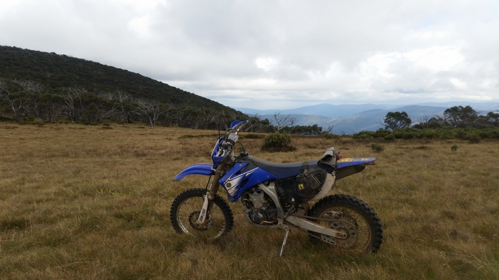 Davies Plain Track - Victorian High Country
