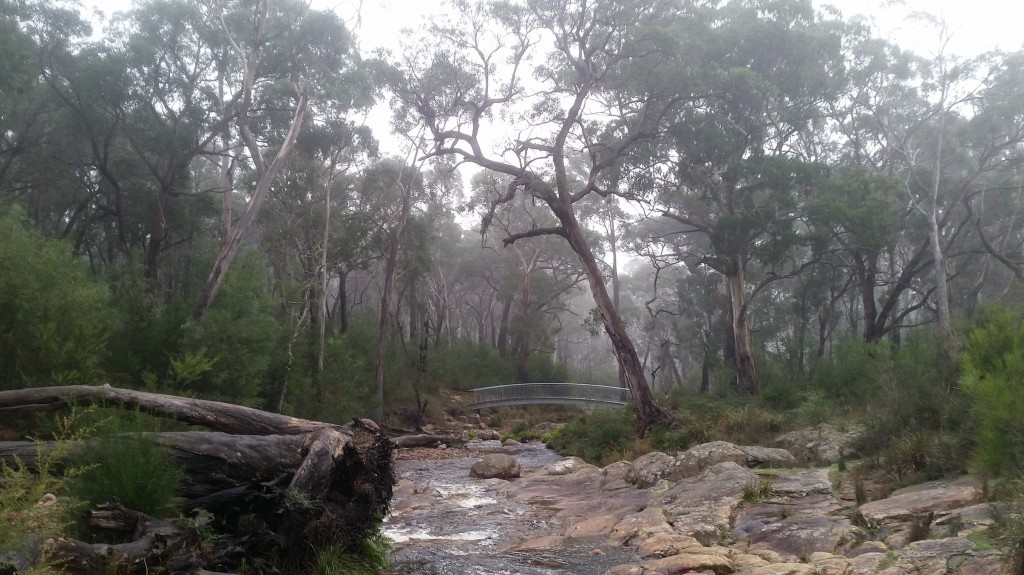 Fyans Creek Bridge - Grampians Peaks Trail