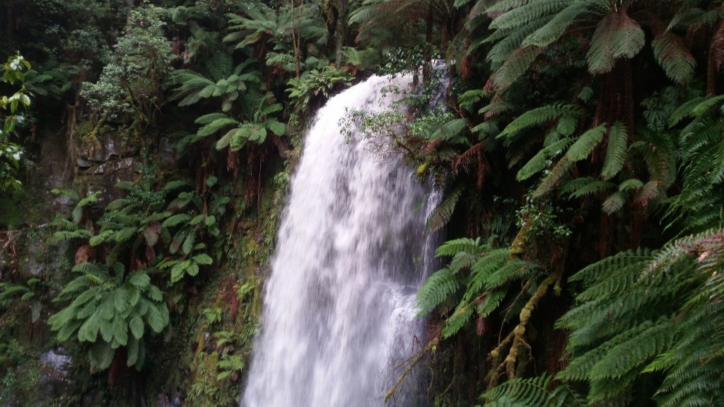 Beauchamp Falls - Otways