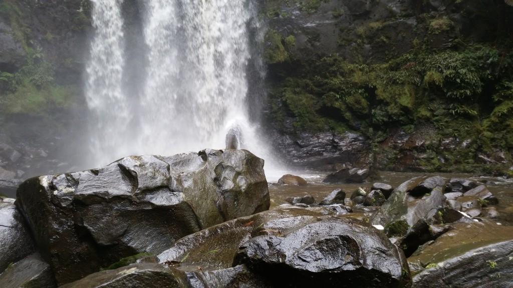 Hopetoun Falls - Otways Rainforest
