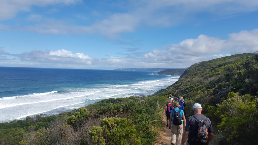 Great Ocean Walk near Castle Cove