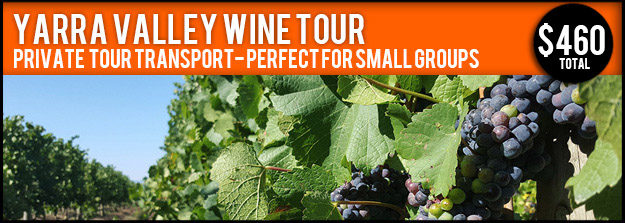Yarra Valley Private Wine Tour