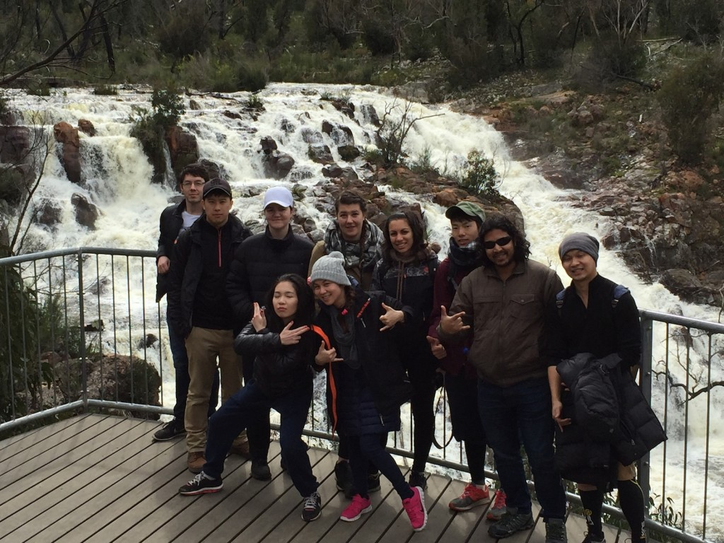 Broken Falls in flood - Grampians National Park