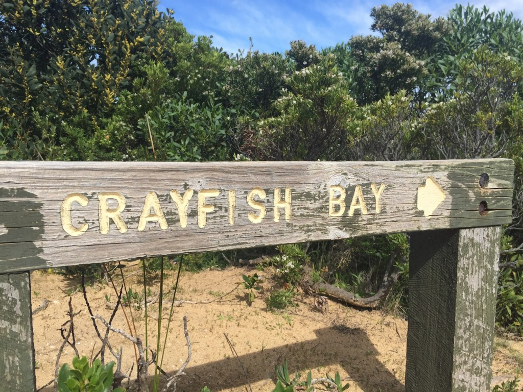 Crayfish Bay - Great Ocean Walk