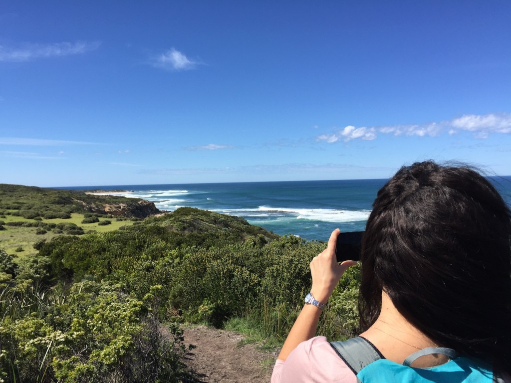 Great Ocean Walk Tour