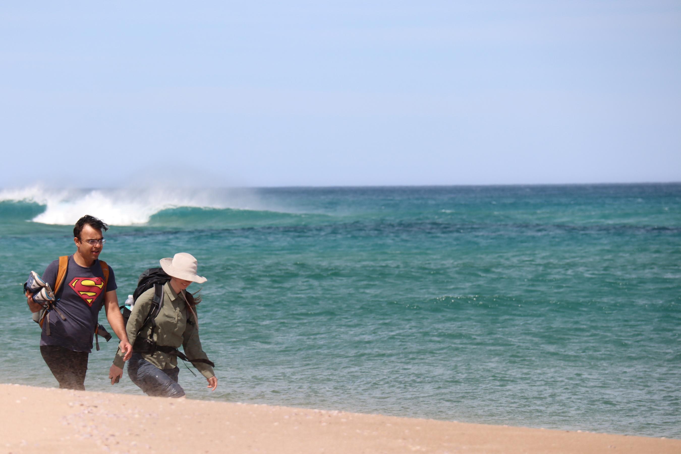 Great Ocean Walk - Johanna Beach